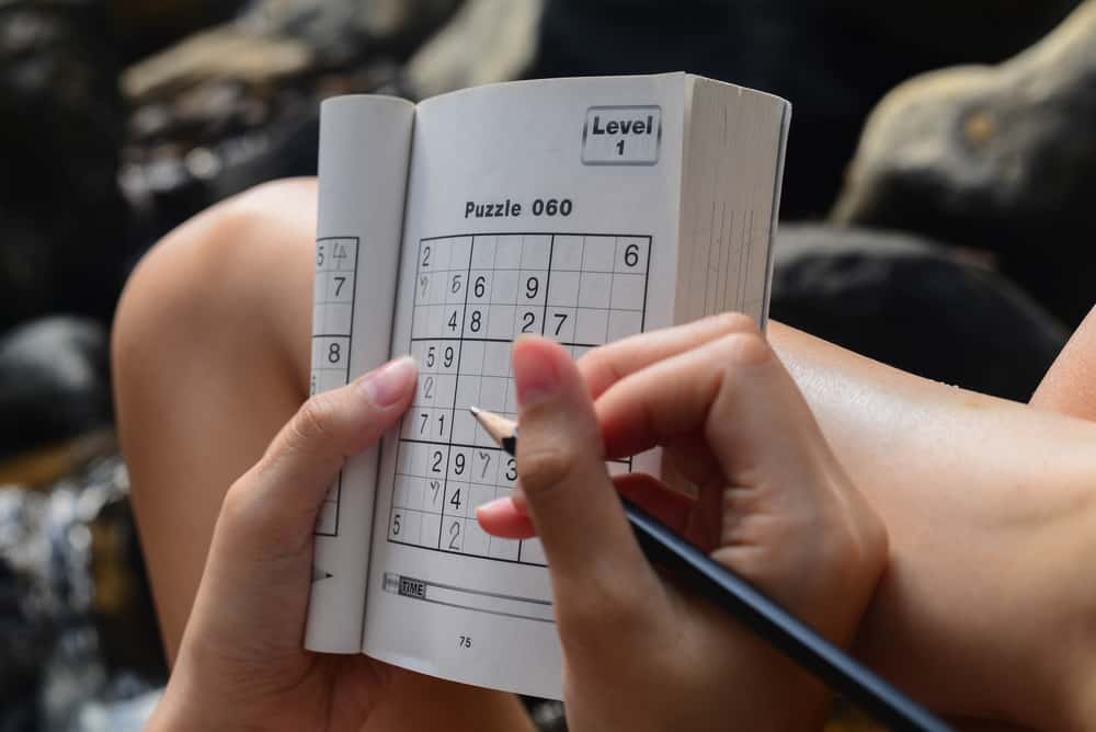 boy with sudoku game