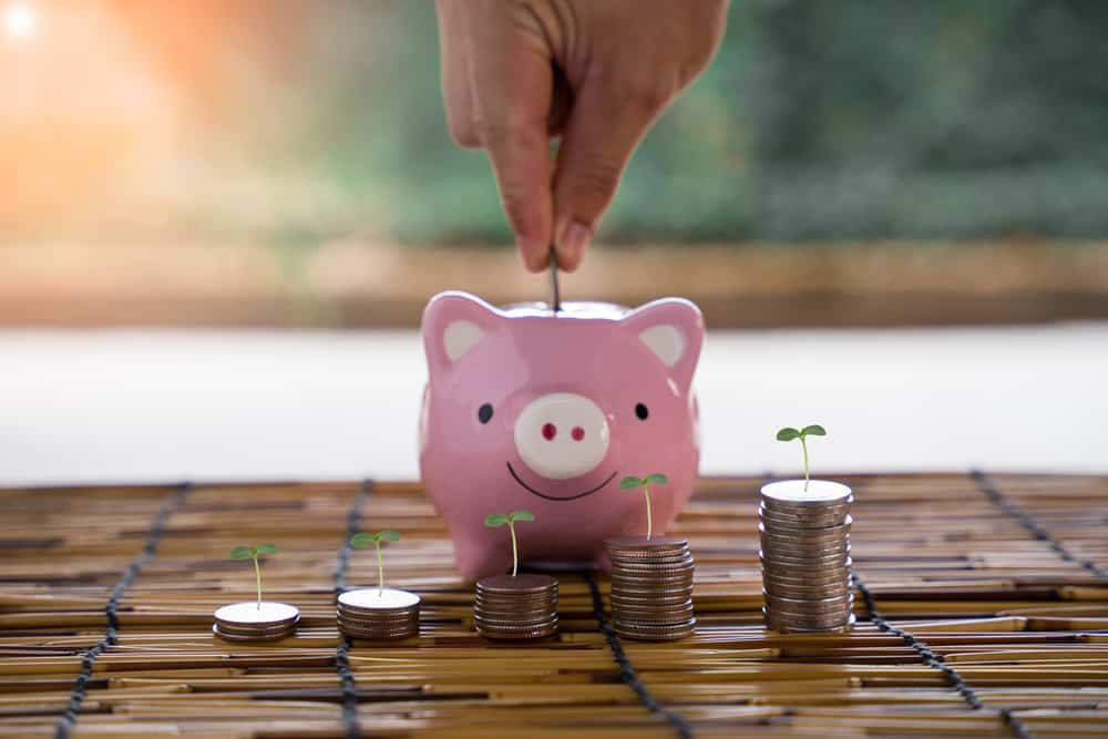 Hands are putting money into piggy bank, growing money, about saving money