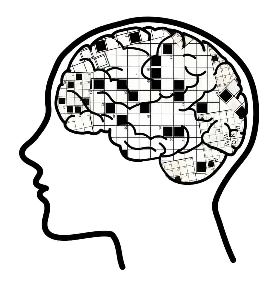 Human profile with visible brain and collage of crosswords