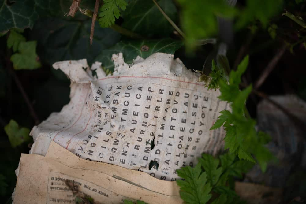 Old word search puzzle lying in the woods