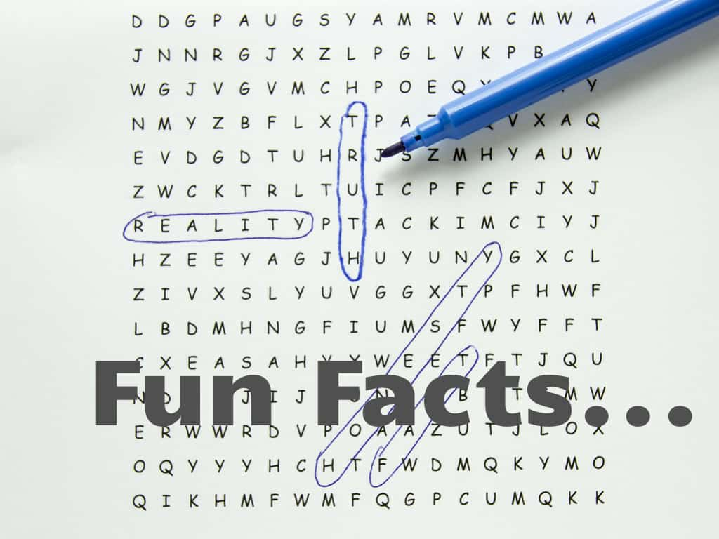 Word search puzzle with text circled, fact word